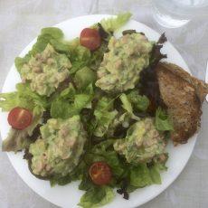 Avocado salade met garnalen